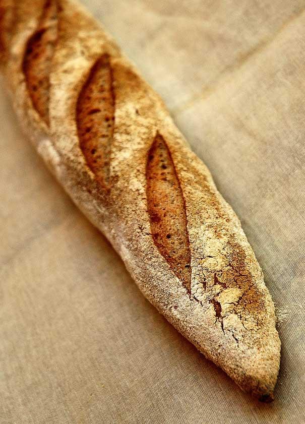 Pan cebada