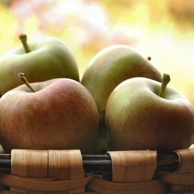 Hasta pronto con sorbete de manzanas de mi jardín