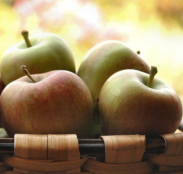 Sorbete manzana