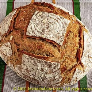 Pan de masa madre de San Francisco