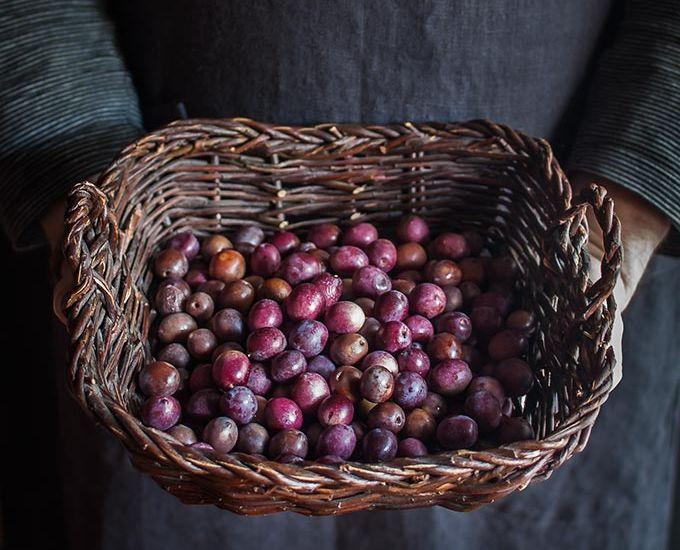 imagen de curar aceitunas