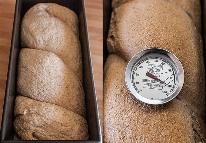 pan de molde integral paso a paso