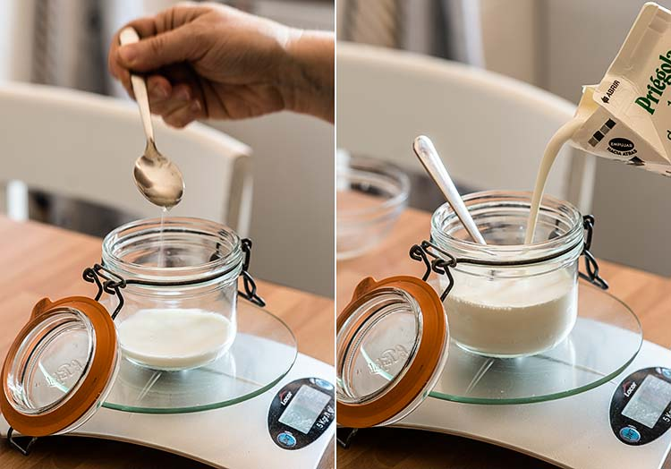 crema agria sour cream creme fraiche