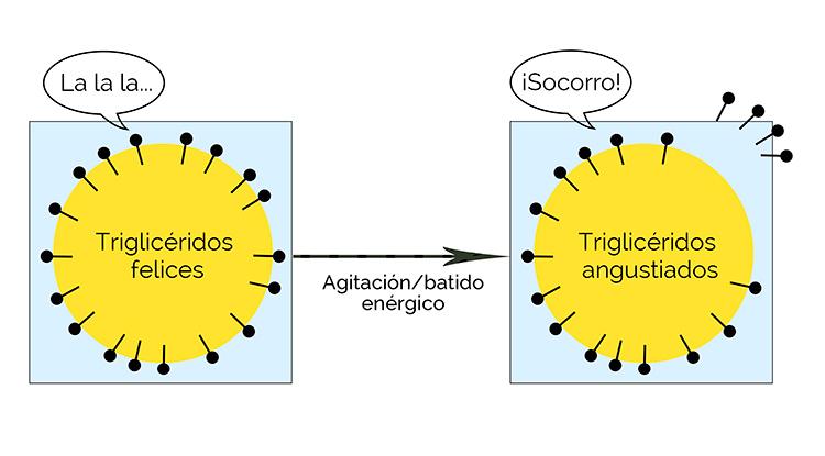 trigliceridos-gota-grasa