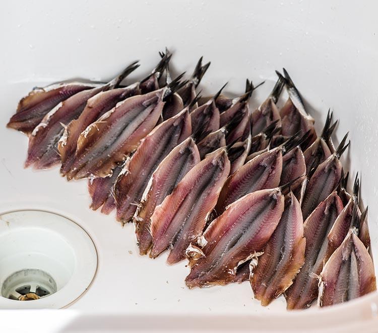 anchoas salazon