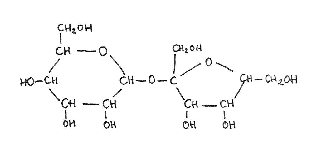 molecula sacarosa